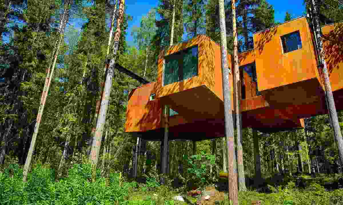 Treehotel in Sweden (Best Served Scandinavia)