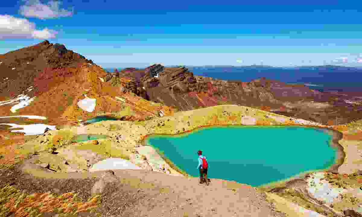 Tongariro National Park, New Zealand (Dreamstime)