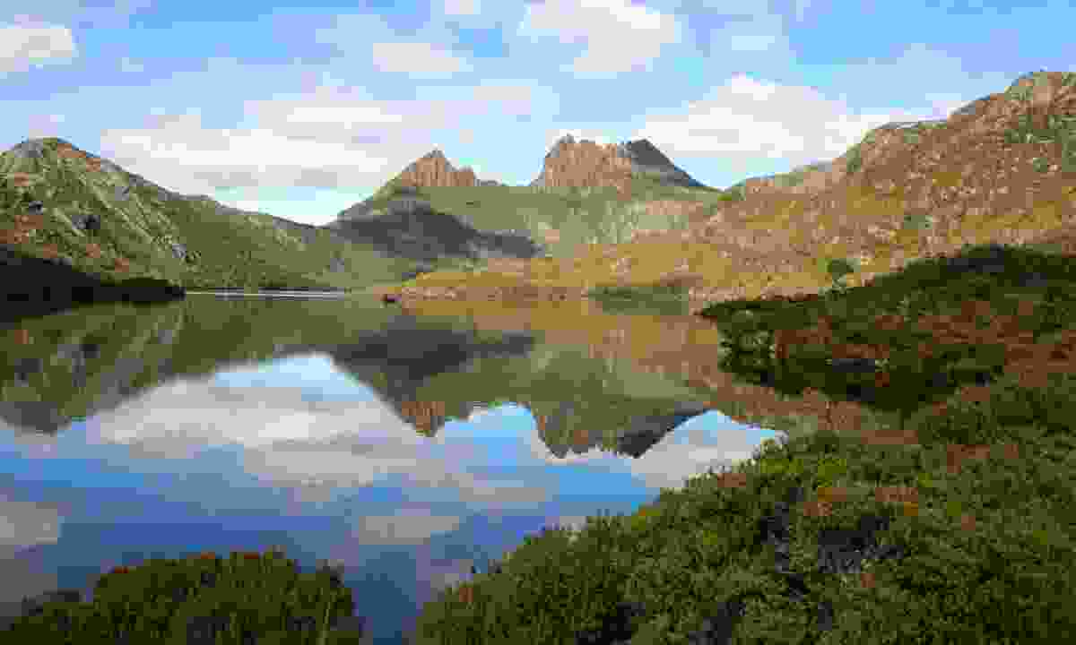 Dove Lake with Cradle Mountain on the horizon (Dreamstime)