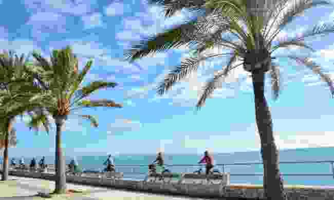 Explore Palma by bike (Jaime Antonio Aguilo Hernandez)