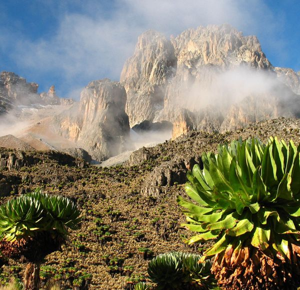 If you like this, try... Mount Kenya, Kenya. Mount Kenya is Africa's second highest mountain at 5,199m. It's an easier, less-crowded climb, filled with wildlife.