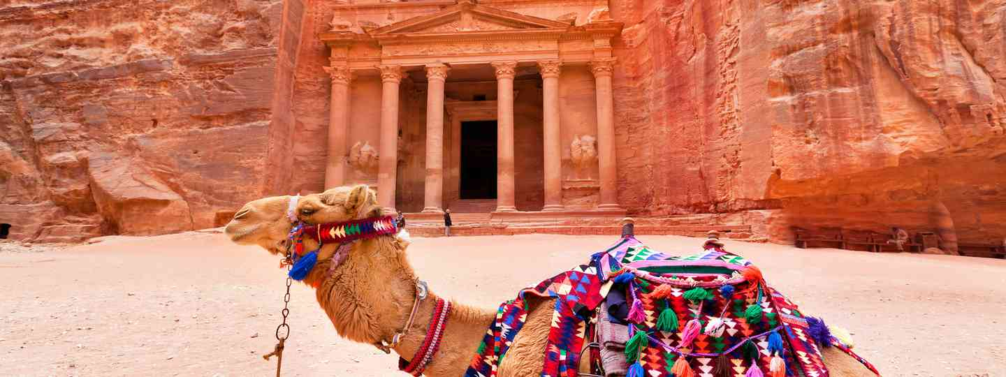 A camel resting outside the Treasury at Petra (Shutterstock)