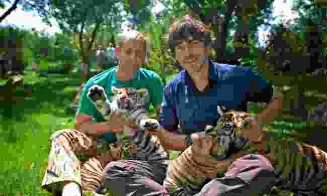 Oleg Zubkov and Simon with Siberian tigers (Jonathan Young, BBC)