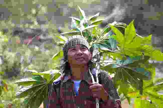Rang-sri Prasopturm of the Red Lahu tribe in northern Thailand (Graeme Green)