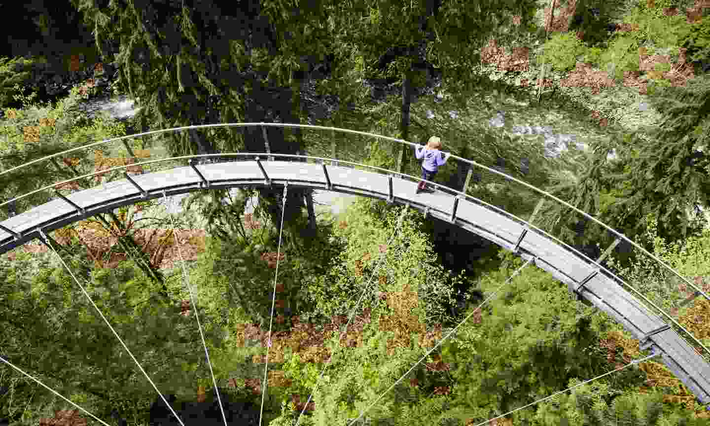 Cliffwalk at Capilano Suspension Bridge Park (Tourism Vancouver)