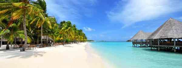 Maldives beach (Dreamstime)