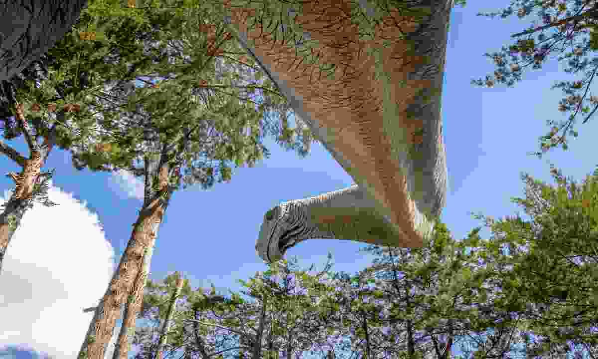 Brachiosaurus dinosaur model (Dreamstime)