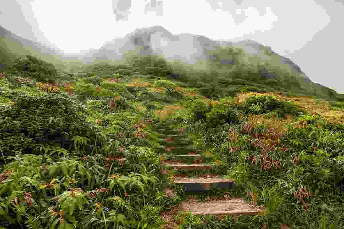 Mount Pelee in Saint-Pierre, Martinique (Shutterstock)