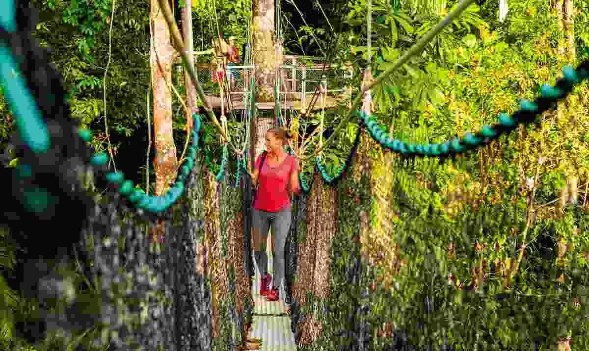 Walking among the treetops in Guyana (KE Adventure Travel)