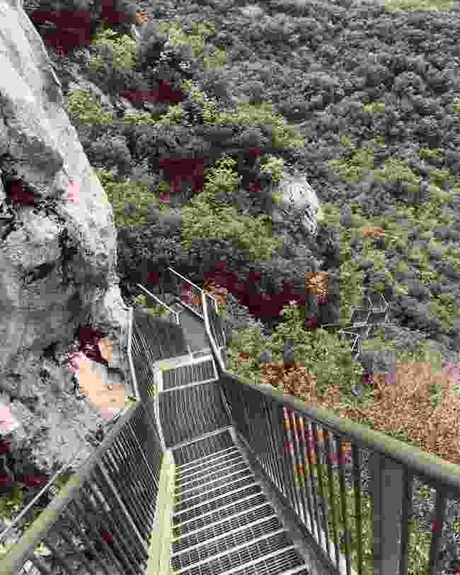 The Busatte-Tempesta Trail