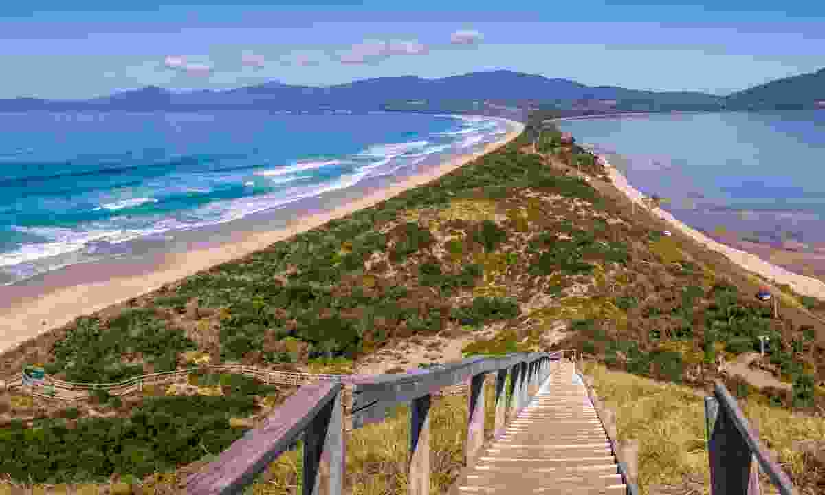 Neck Lookout, Bruny Island (Dreamstime)