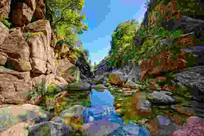 Mountain creek in Peneda-Gerês National Park (Shutterstock)