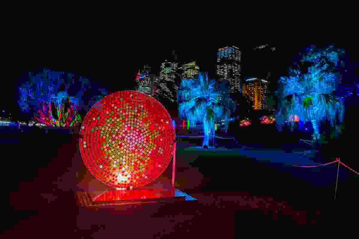 Light installation in the Botanical Gardens (VividSydney)