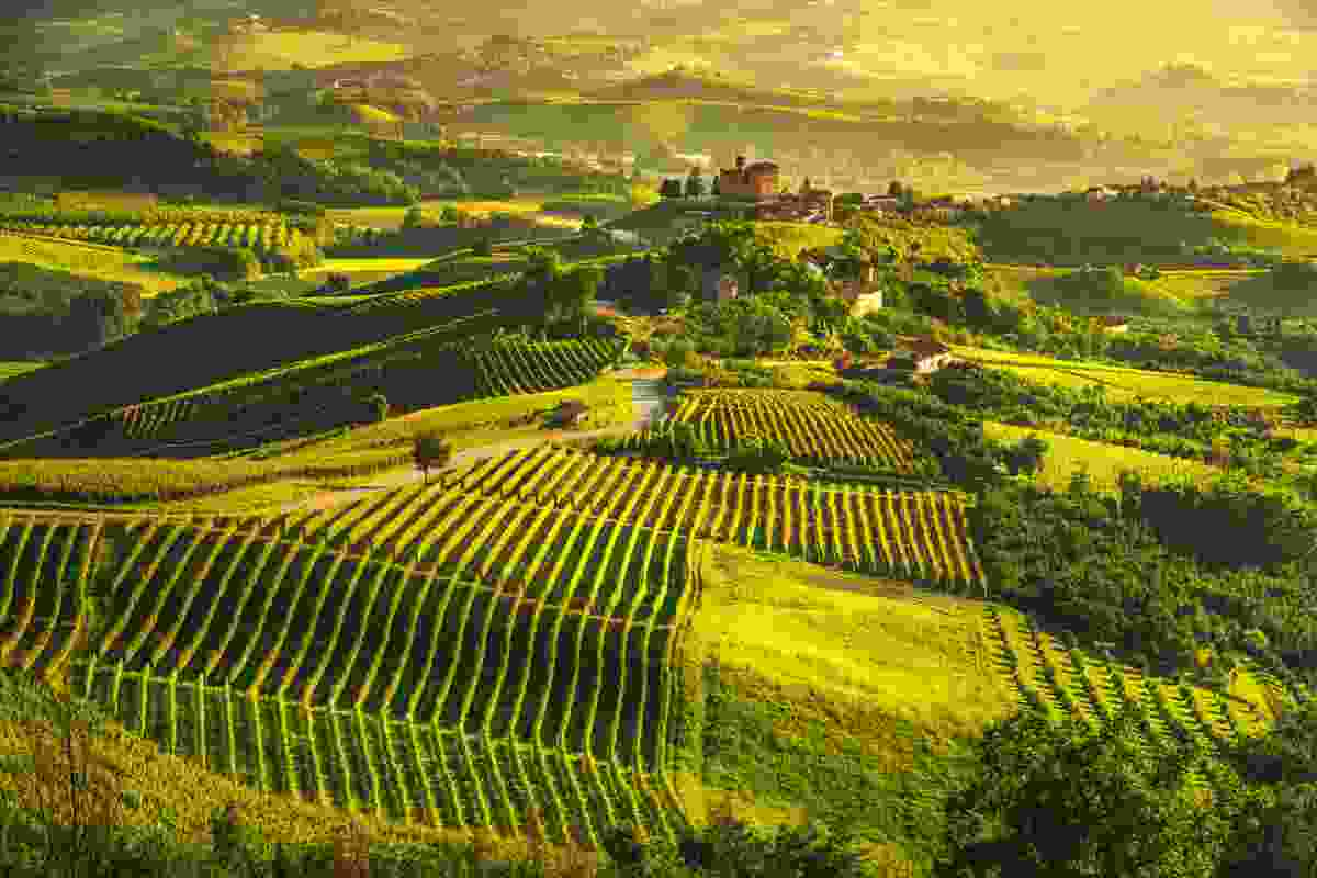 The landscape of Piedmont, Italy (Shutterstock)