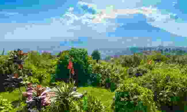 Rwanda is open to tourists  (Shutterstock)