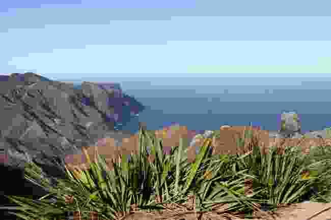 Volcanic coastline of Sandy Bay (Shutterstock)
