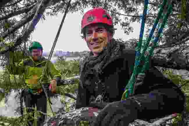 With arborist Jake Milarch, in canopy of giant redwood trees, California (BBC/Craig Hastings)