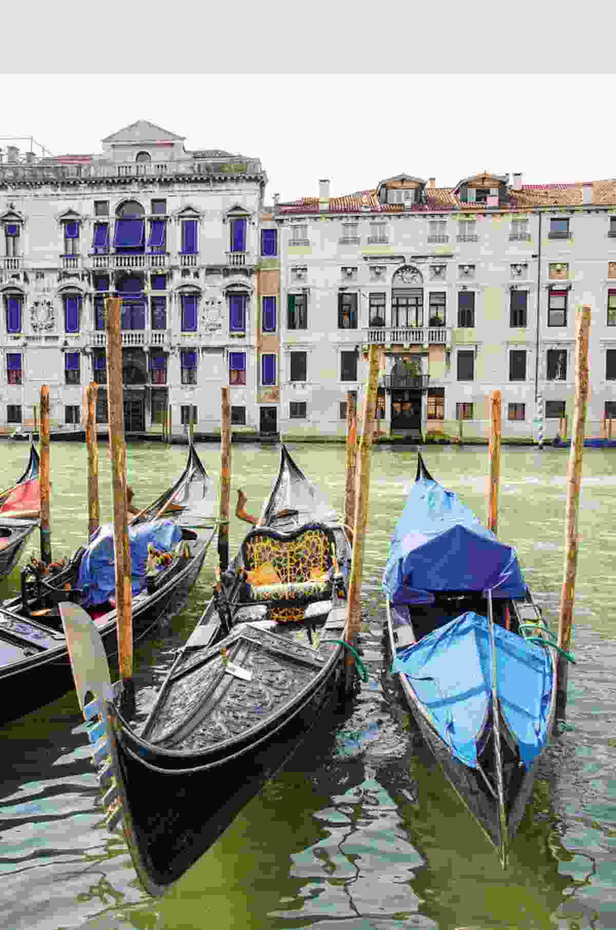 Traditional Venetian gondolas (Phoebe Smith)