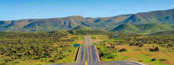 Route One in Baja California Sur, Mexico (Shutterstock)