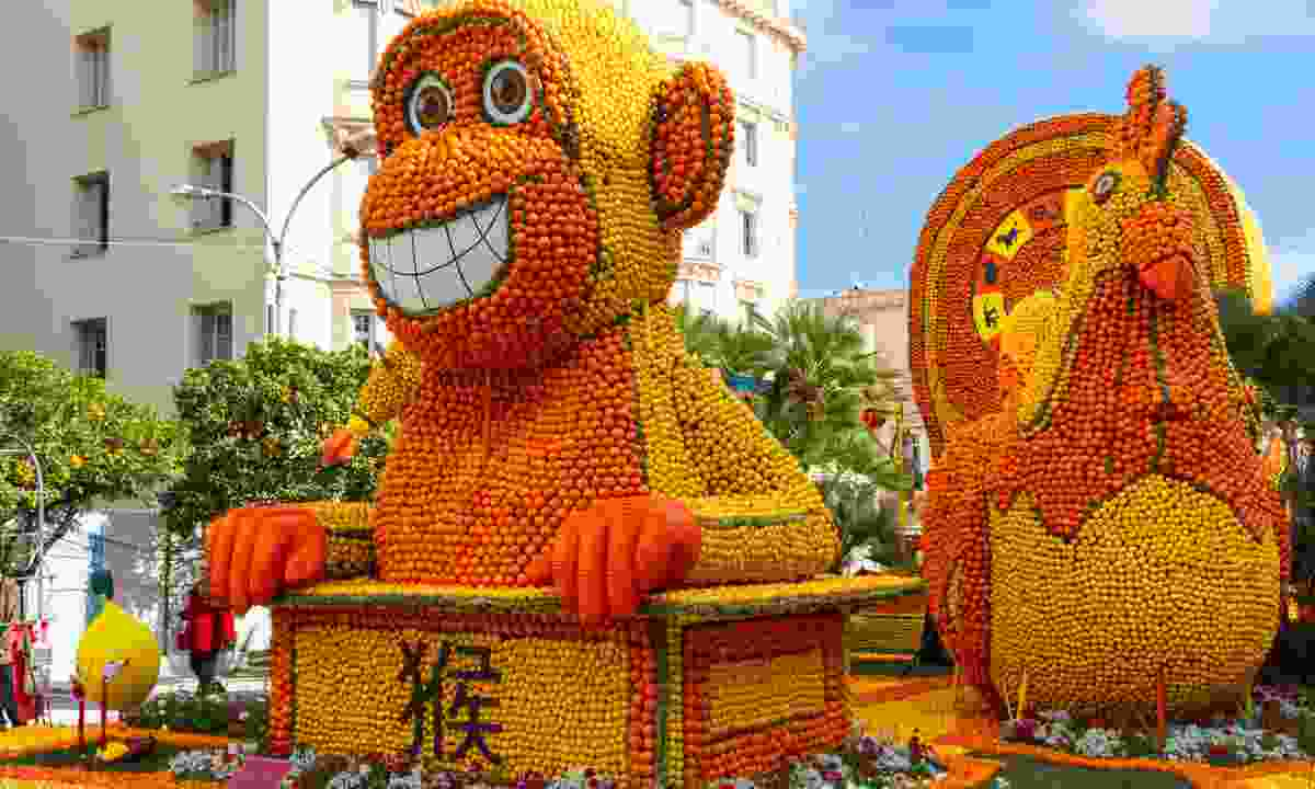 A colourful creation made from oranges and lemons (Dreamstime)