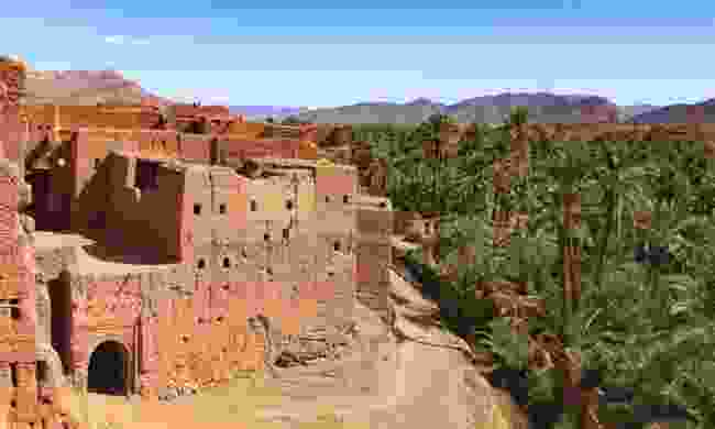 The Draa Valley in Morocco (Dreamstime)