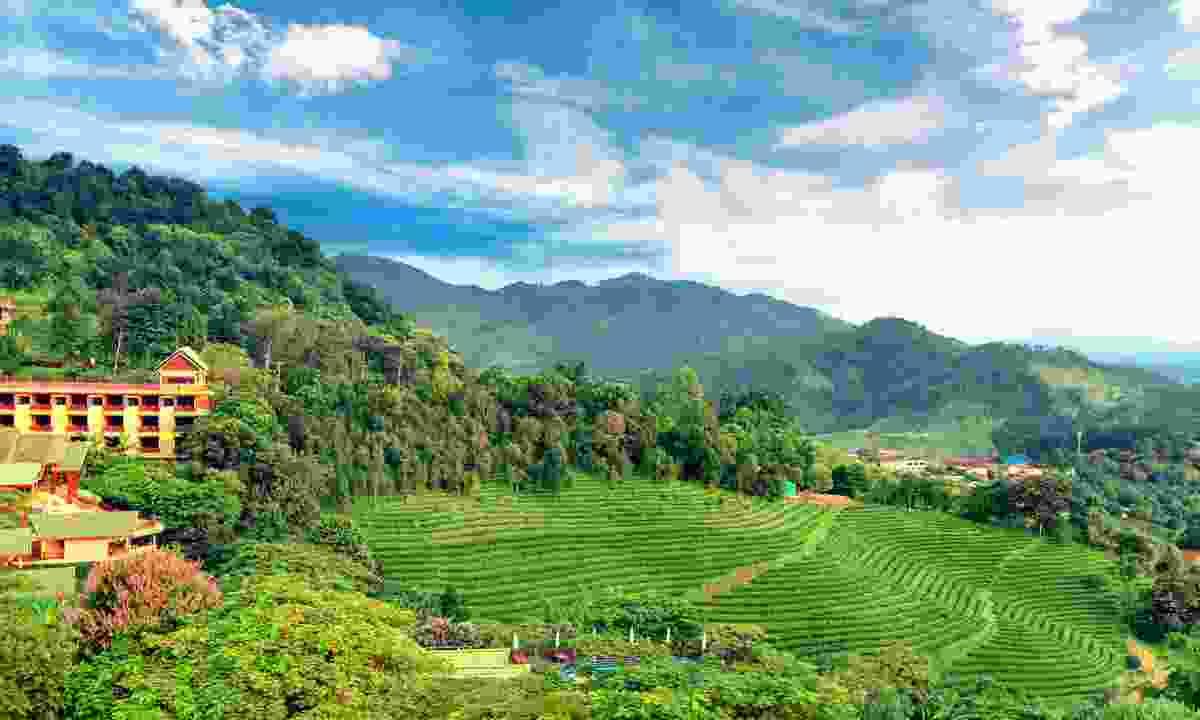 Rural landscape in Thailand (Dreamstime)