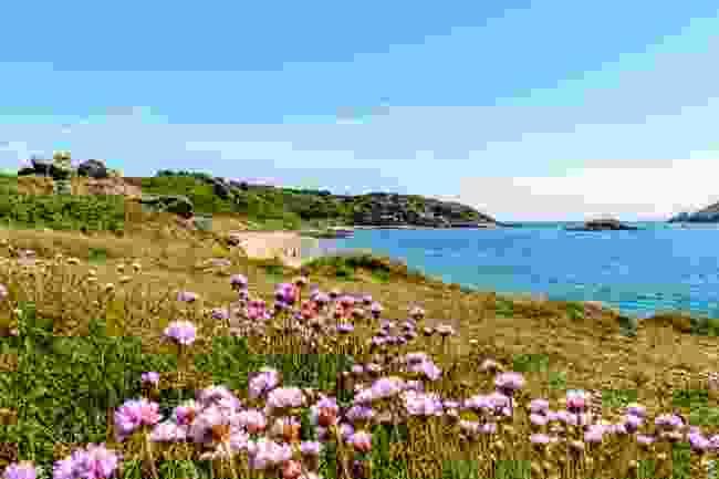 The coast of Herm (Shutterstock)
