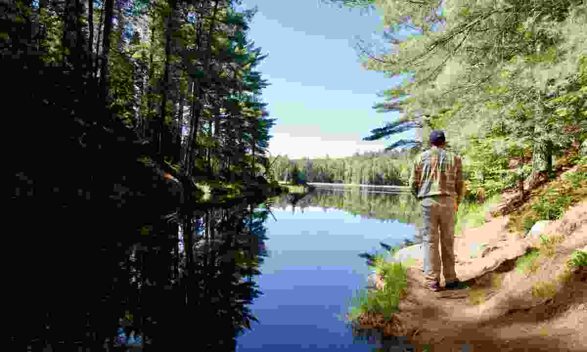 Hiking in Algonquin Provinical Park (Shutterstock)