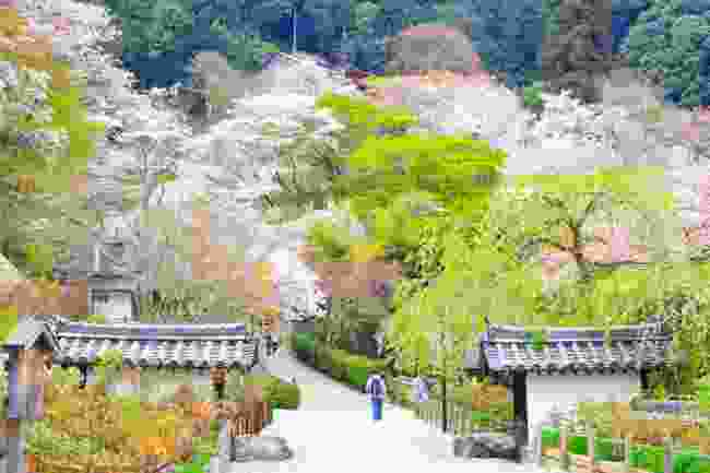 Isui-en Garden, Nara, Japan (Shutterstock)