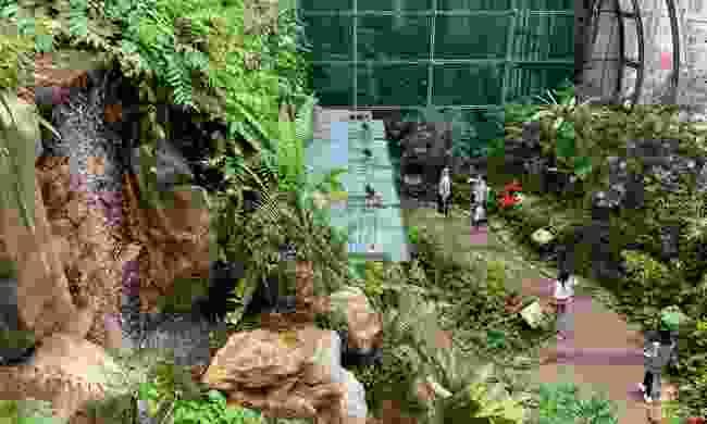 Butterfly garden inside Changi airport (Shutterstock)