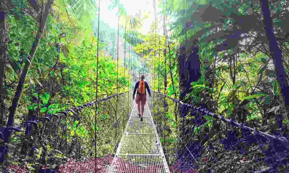 A hanging bridge in Monteverde (Dreamstime)