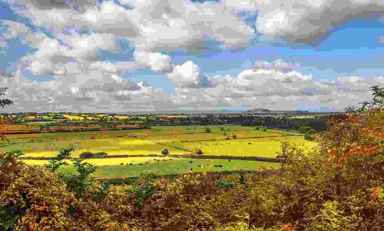Green fields near Salisbury (Dreamstime)