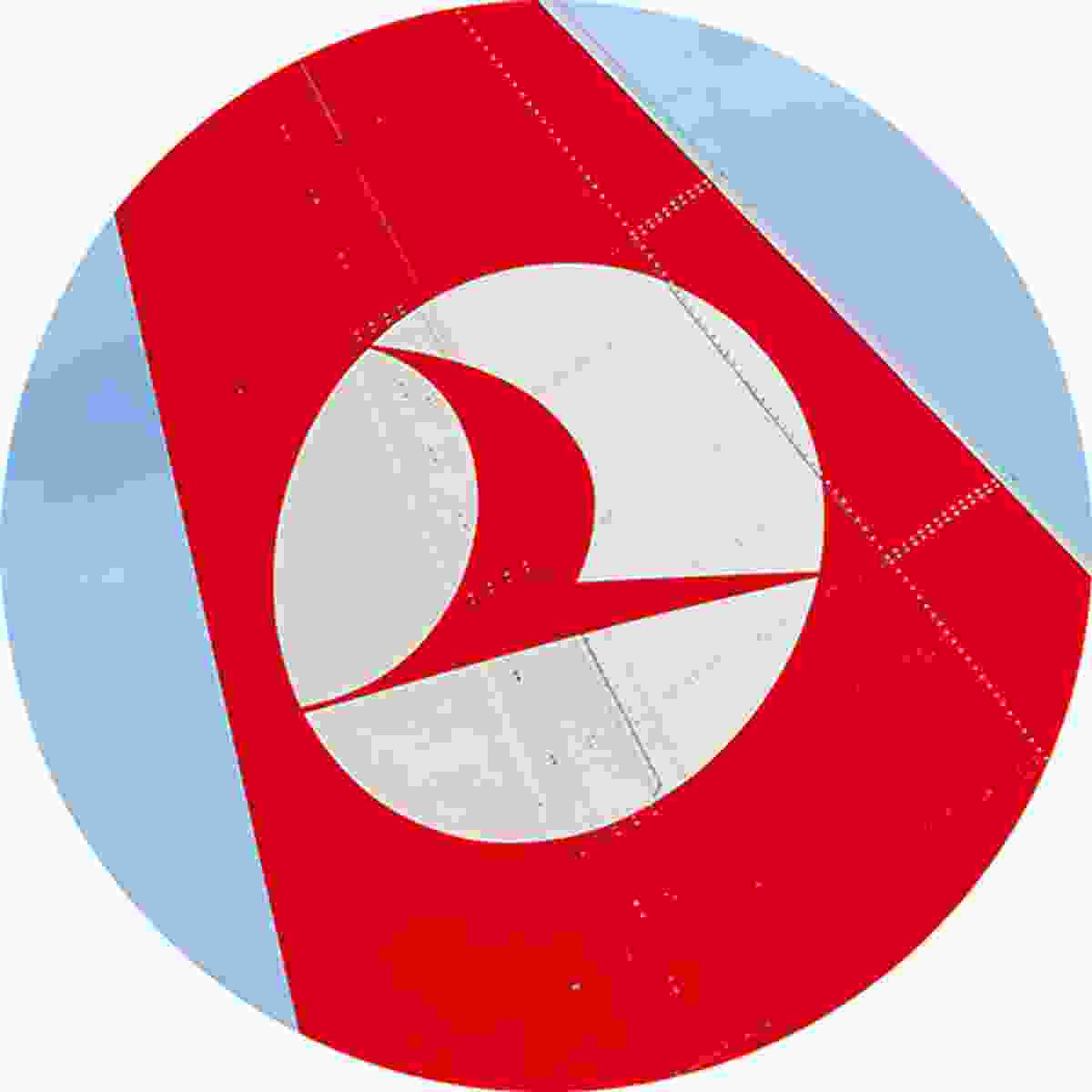 The Turkish Airlines logo depicts the world's highest flying bird, the wild goose. It can rise up to 29,035 feet (Shutterstock)
