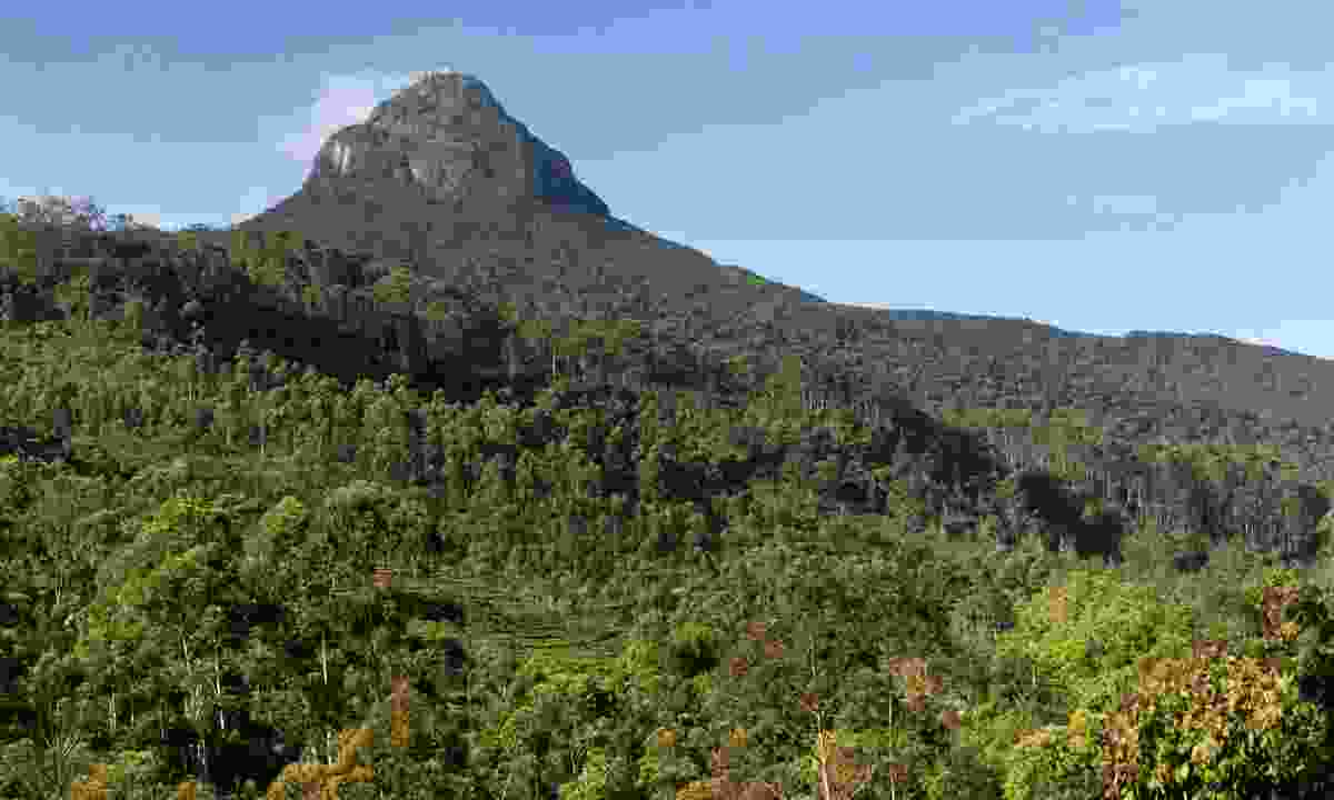 Adam's Peak (Dreamstime)