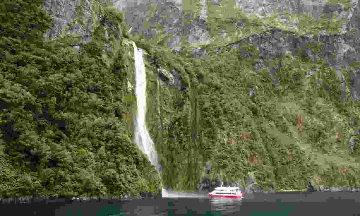 Doubtful Sound, New Zealand (Dreamstime)