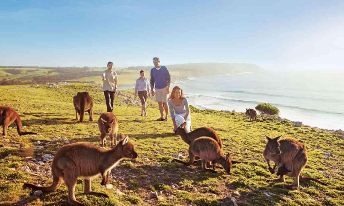 Kangaroo Island (SATC)