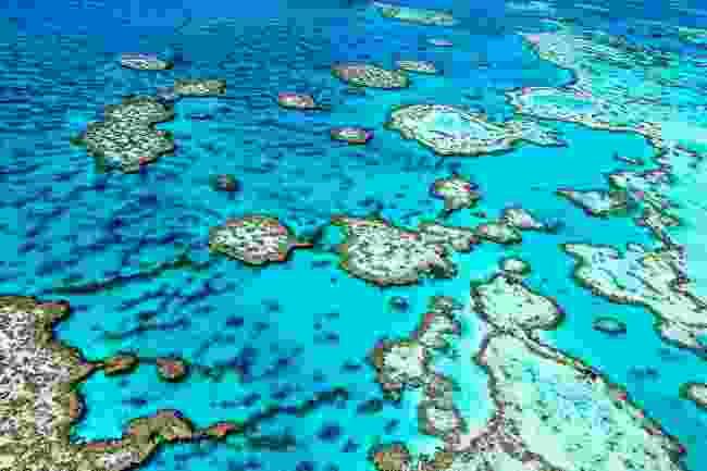 The Great Barrier Reef in Queensland, Australia (Shutterstock)