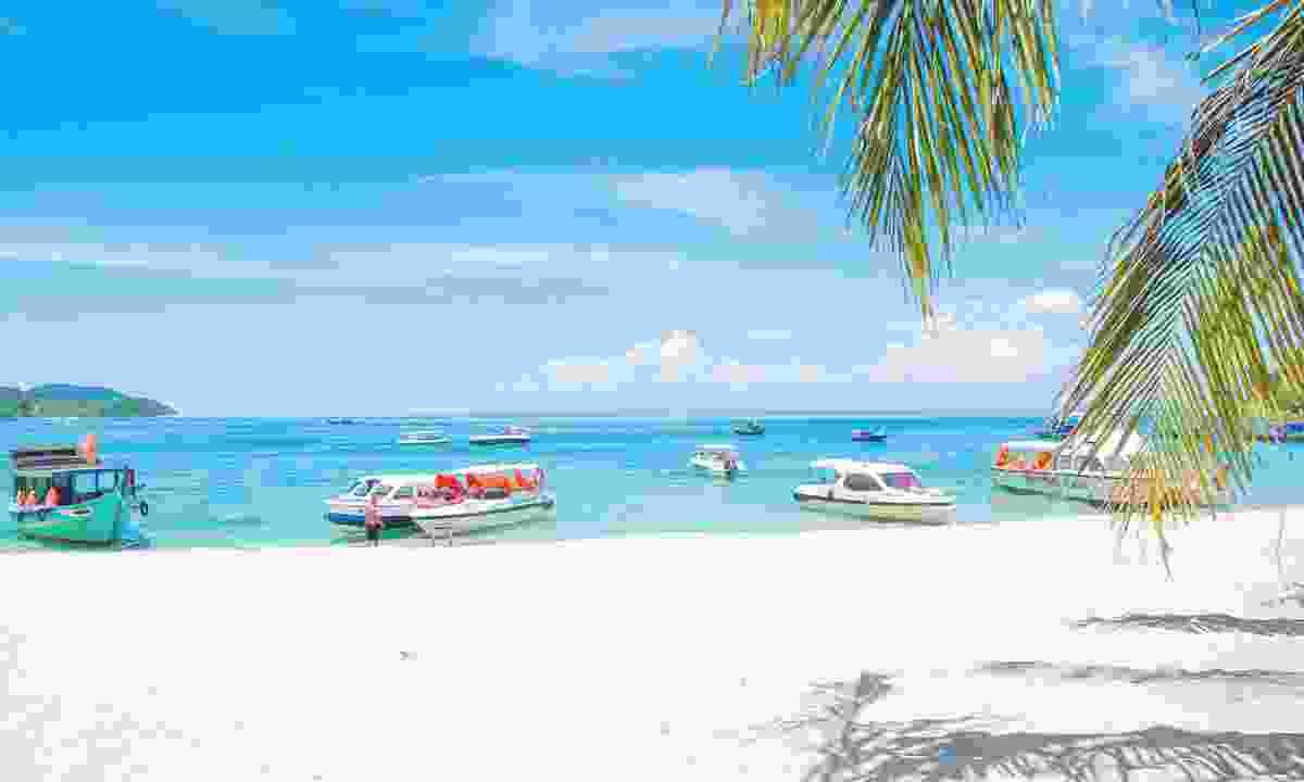 Cham Island beach (Shutterstock)