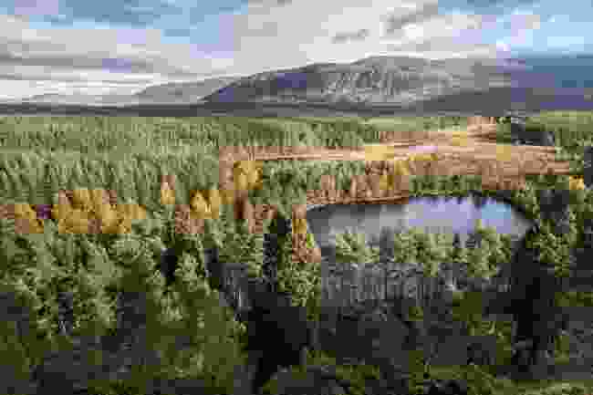 Uath Lochans in Cairngorms National Park (Dreamstime)