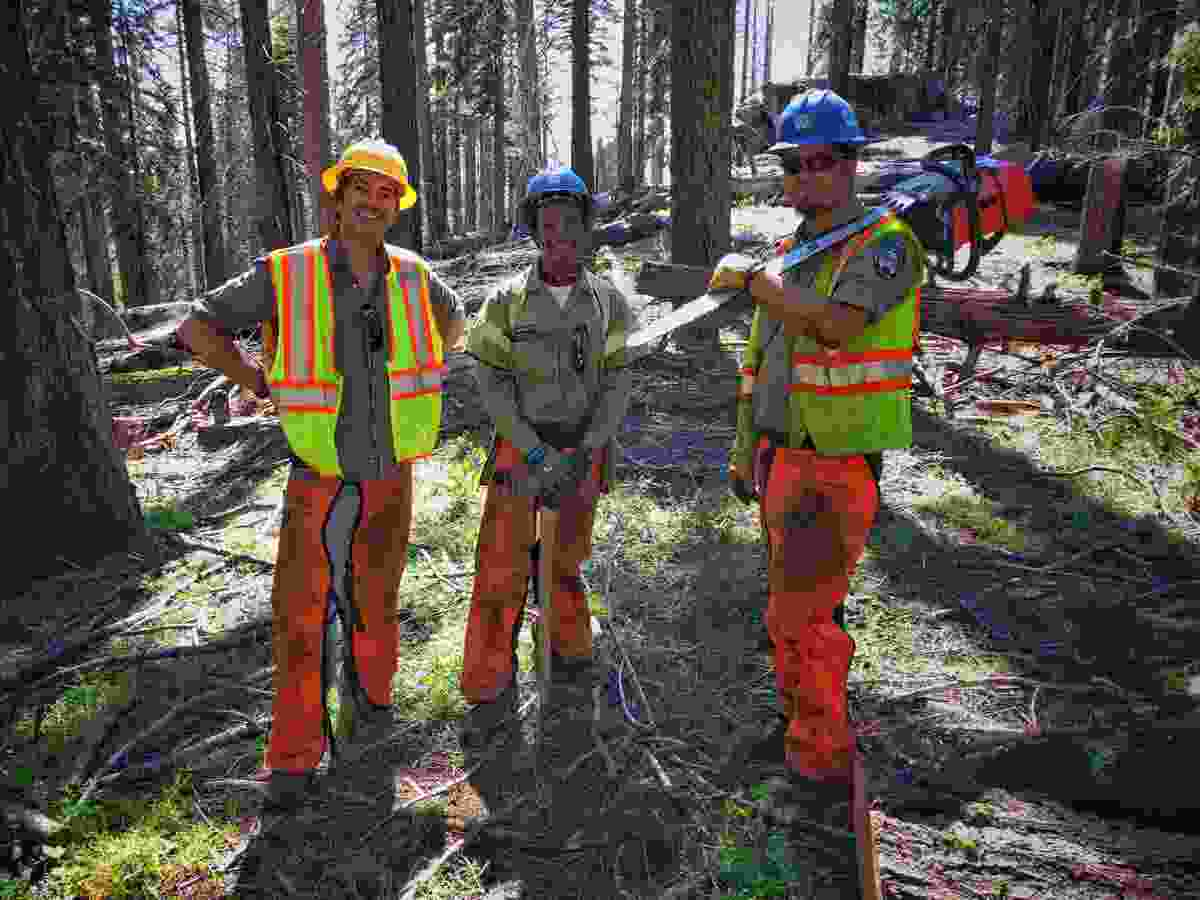 With members of the California Conservation Corps, Kings Canyon National Park, California (BBC/Ruairi Dunne)