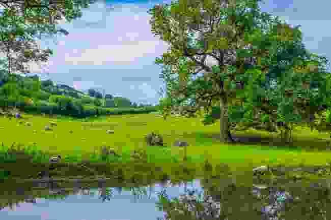 Brecon Canal (Shutterstock)