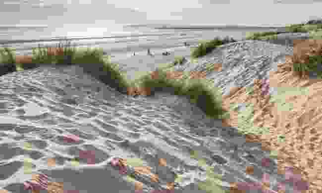 Camber Sands. Sandy. (Shutterstock)