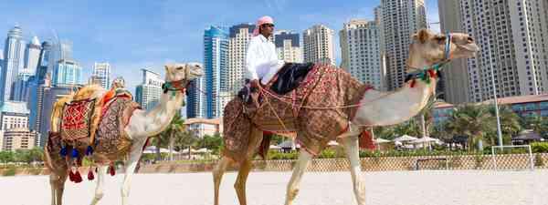 Jumeirah beach, Dubai, United Arab Emirates (Dreamstime)