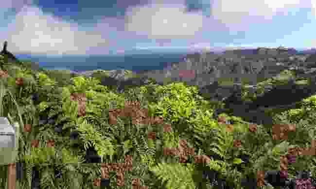 Diana's Peak (David Pryce)