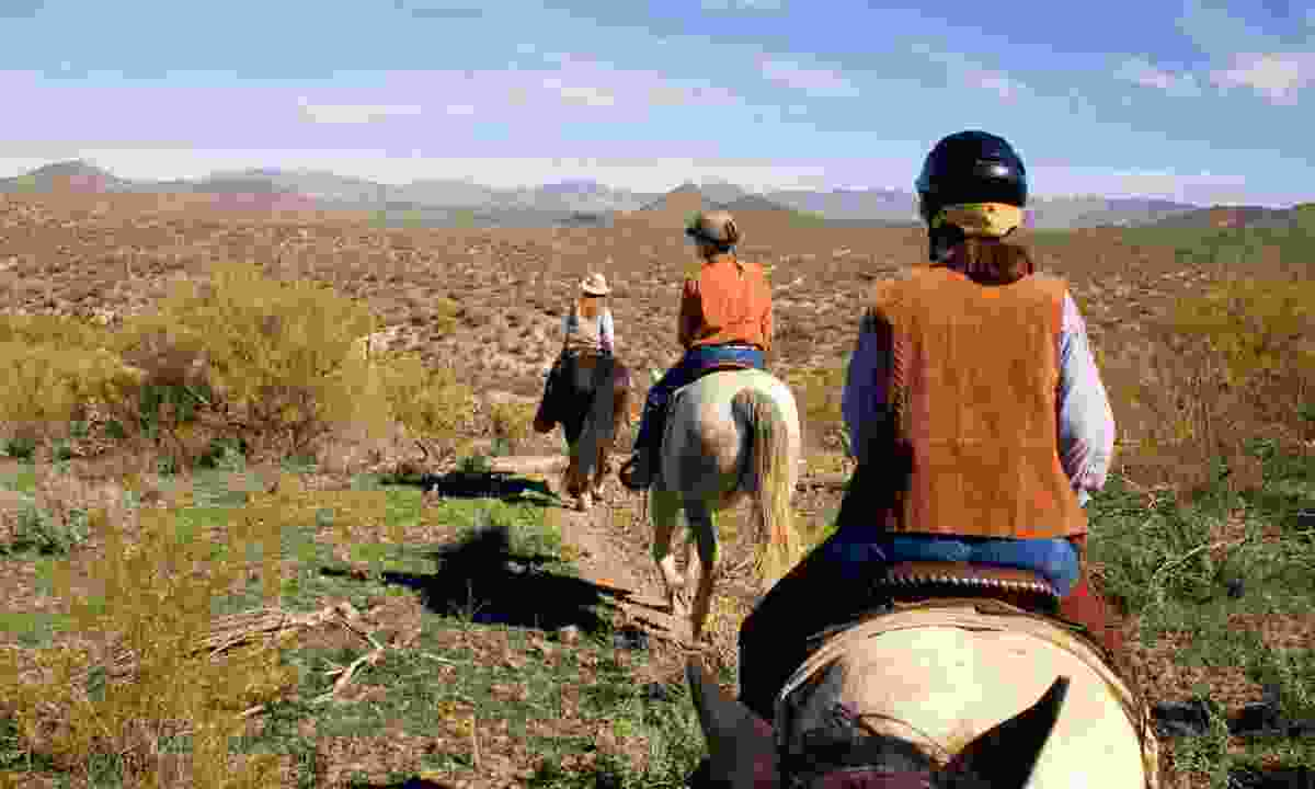 Horseriding in the USA (Dreamstime)