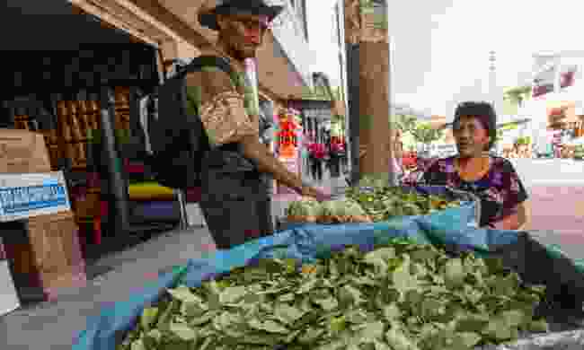 Bags of coca leaves sold on the street (Dreamstime)
