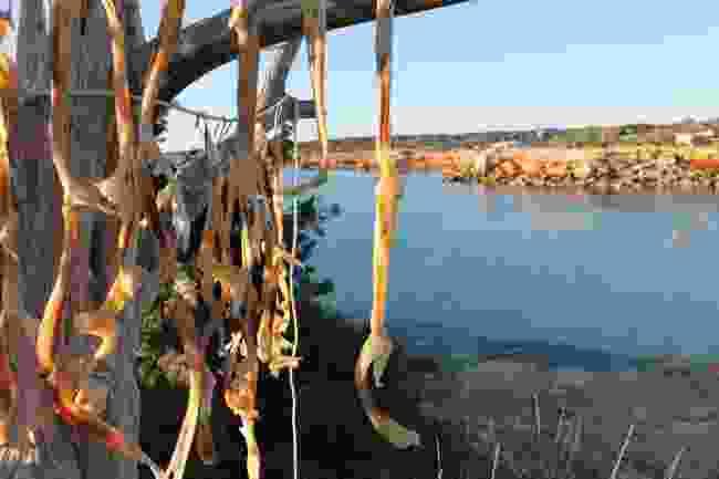 Dried fish is popular in Formentera (Turismo de Formentera)