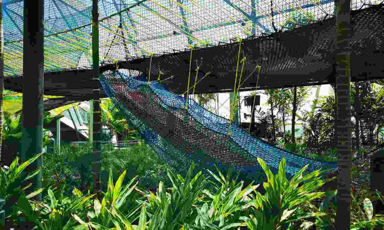 Sky nets at Changi airport (Shutterstock)