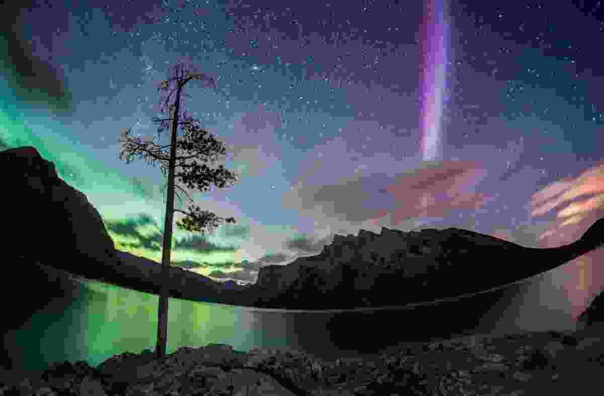Aurora Borealis at Lake Minnewanka (Paul Zizka)