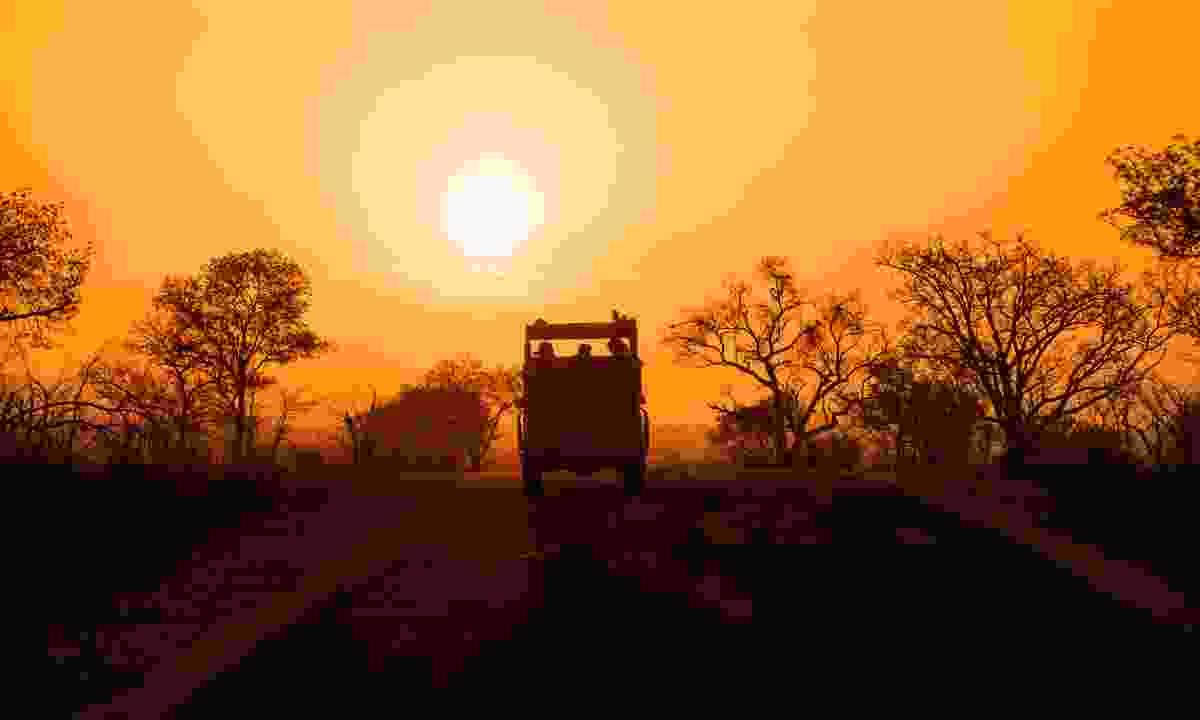 A sunset safari in Kruger National Park (Dreamstime)